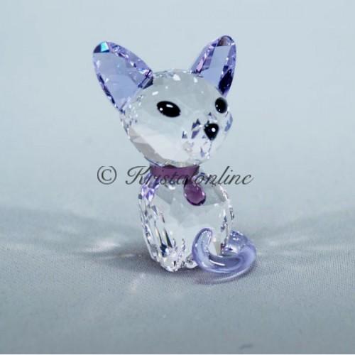 Kitten - Fiona the Siamese