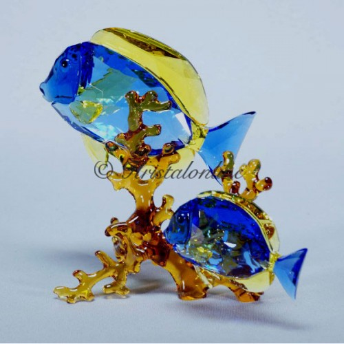 Swarovski Crystal | Crystal Paradise | Doctorfish Couple 5223194