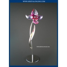 Swarovski Crystal   Crystal Paradise   Dorora - Fuchsia Rain 681542