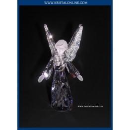 Angel 2008
