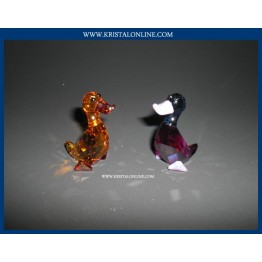 Lily & Luke - Ducks