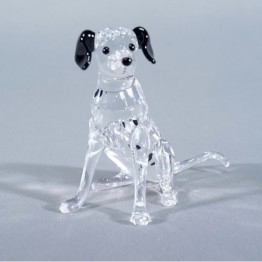 Dalmatian Mother