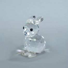 Bunny Rabbit mini sitting