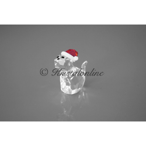 Cat with Santa's Hat