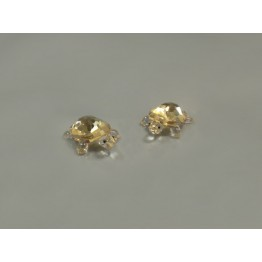 Baby Turtles Golden Shadow - set of 2