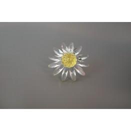SCS - Renewal Gift 1999 - Marguerite yellow
