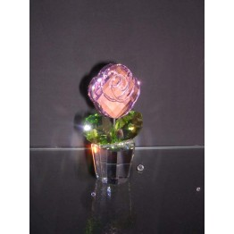 Rose medium without box cover