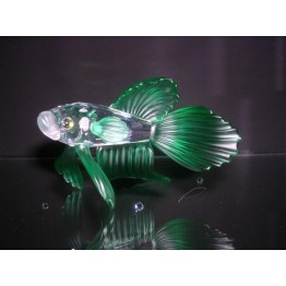 Siamese Fighting Fish Green