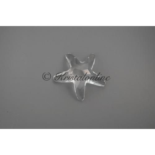 2005 Starfish