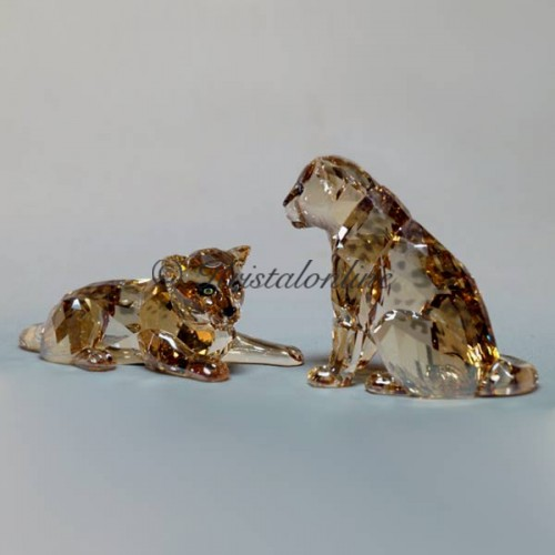 Swarovski Crystal | SCS Members | SCS - 2019 - Amur Leopard Cubs | 5428542