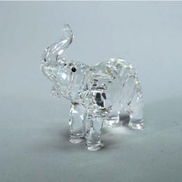 Elephant baby
